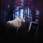 XBorealis's avatar