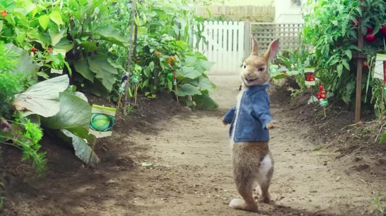 New Peter Rabbit Movie