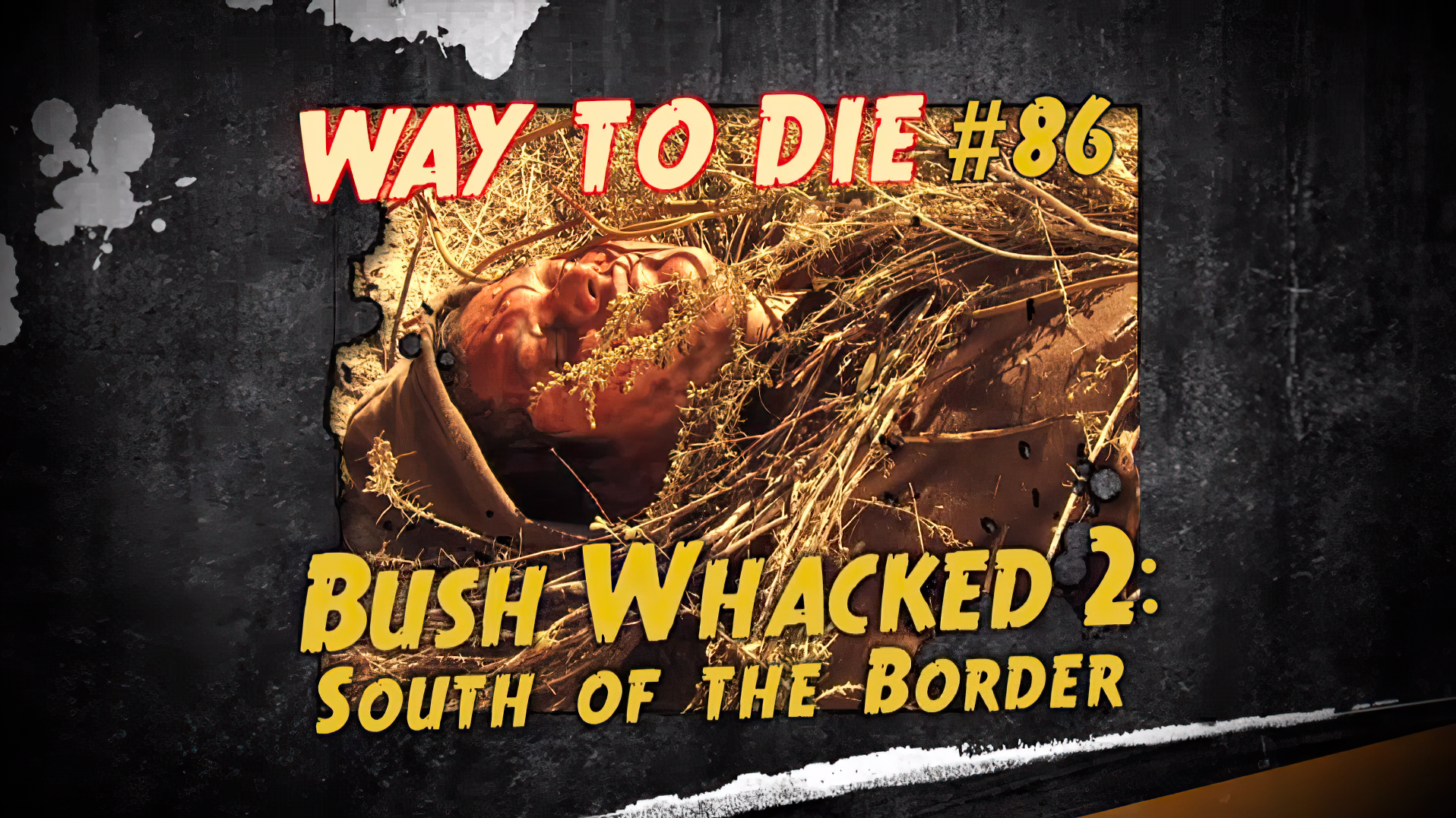 Bush Whacked 2: South of the Border