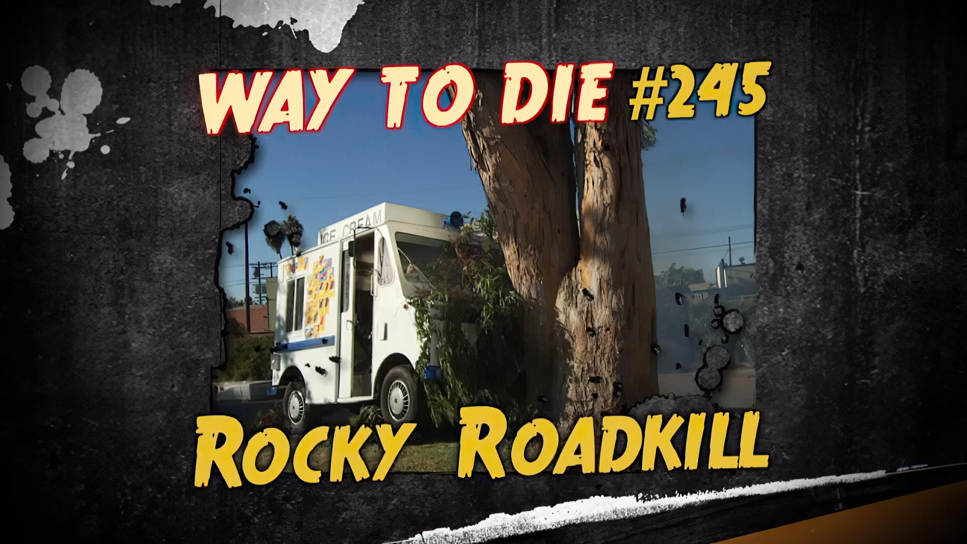 Rocky Roadkill