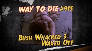 Bush Whacked 3.png