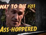 Ass-Hoppered