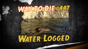 Water Logged.png
