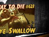 Eye Swallow