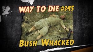 Bush Whacked.png