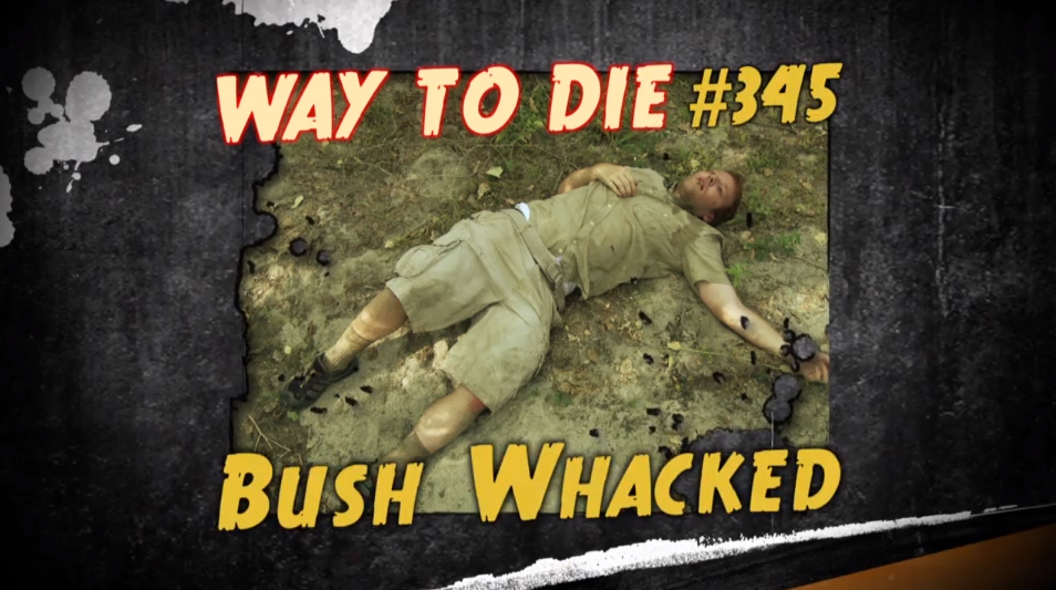 Bush Whacked