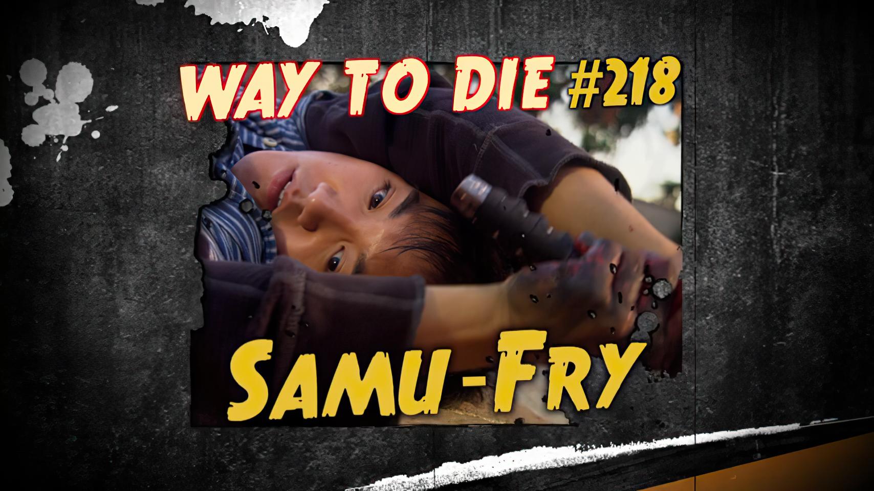 Samu-Fry