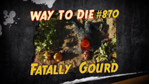 Fatally Gourd.png