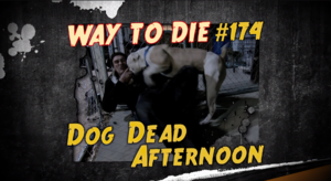 Dog Dead Afternoon.png