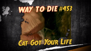 Cat Got Your Life.png