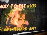 Flame Retard-ant