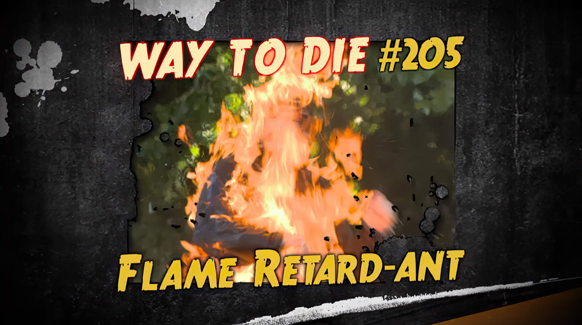 Flame Retard-ant