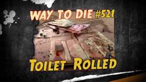 Toilet Rolled.png