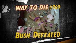 Bush Defeated.png
