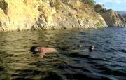 Water Logged.jpg