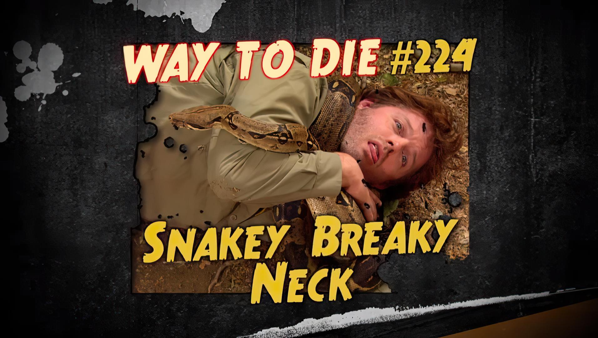 Snakey Breaky Neck