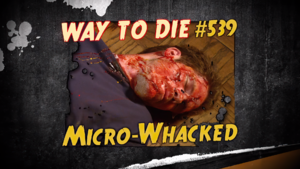 Micro-Whacked.png