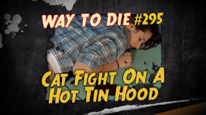 Cat Fight On A Hot Tin Hood.png