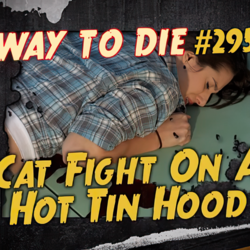 Cat Fight On A Hot Tin Hood