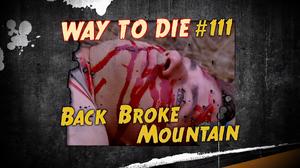 Back Broke Mountain.png