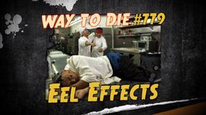 Eel Effects.png