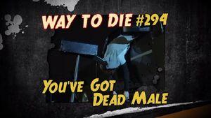 You've Got Dead Male.jpg