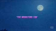 Tittle-The Moonstone Cub
