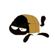 Cave Kat