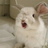 Flowerrrrry's avatar