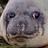 Decyphrs's avatar