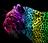 SnowCat101's avatar