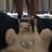 Temperature-is-fake's avatar