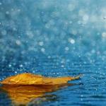 Storm-in-Rain