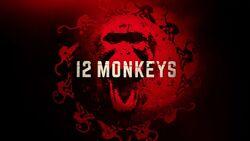 12 monkeys titre.jpg