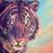 Mountain Tigrus's avatar