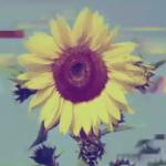 ZeroZeroEight's avatar
