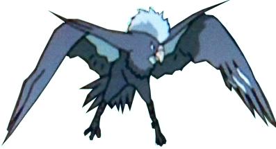 BirdKiteyouma.png