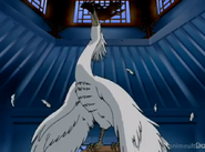 Hakuchi dieing