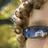 Ceiling99's avatar