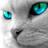 Riviere D'Aubepine's avatar