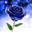 BlueGoldenRose's avatar