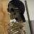 Noob999787's avatar