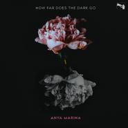 How-Far-Does-the-Dark-Go?