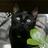 Мрачная2017's avatar