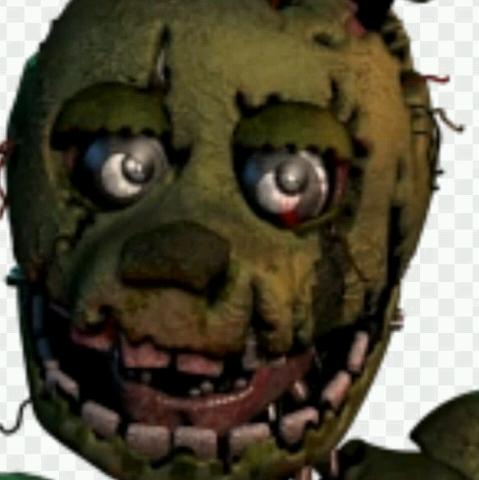 Springe trap oficial's avatar