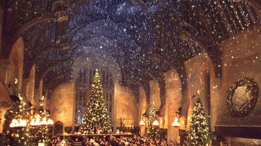 El Gran Comedor de Hogwarts vuelve a abrir sus puertas para la Cena de Navidad. ¡No te quedes sin entrada!