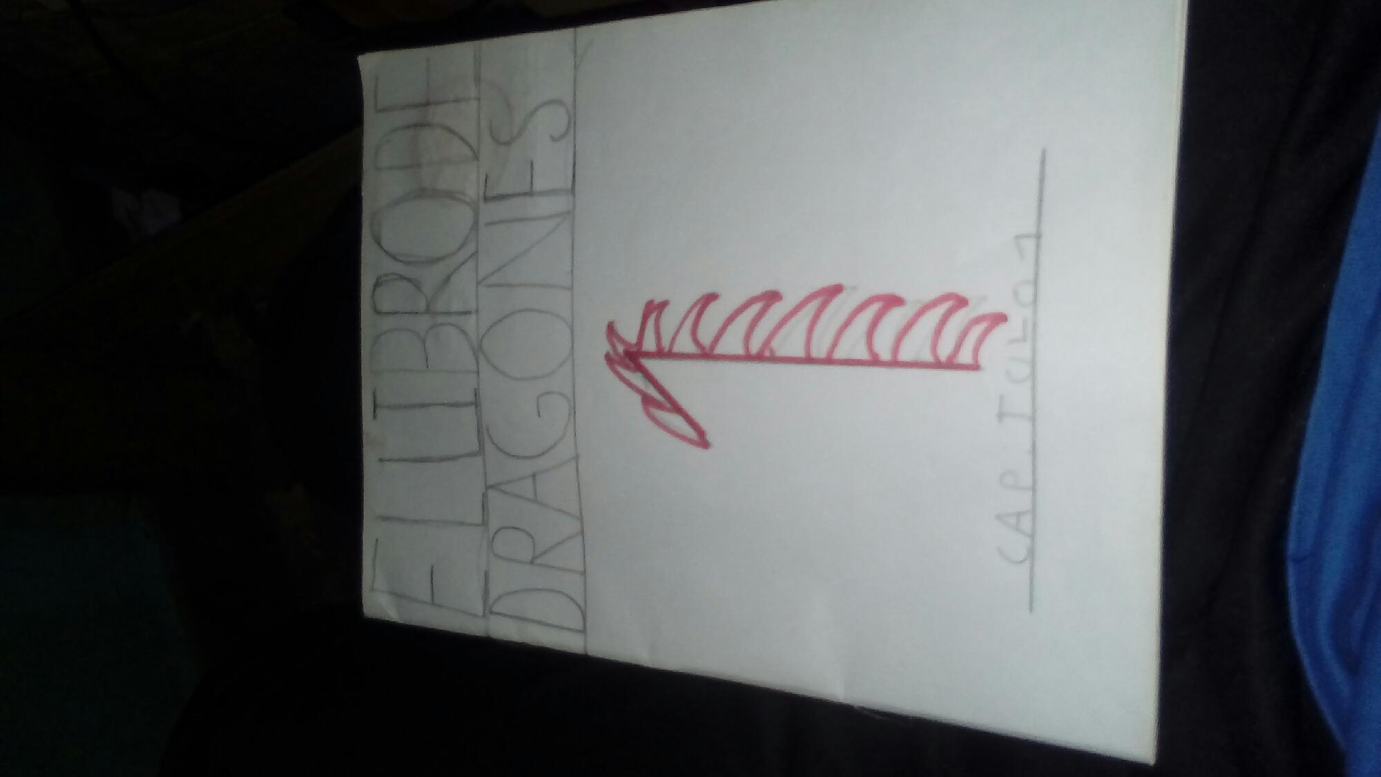 Mi libro dragones