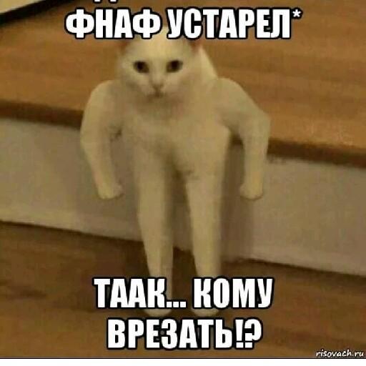 "Вьюга ""бродяга""'s avatar"