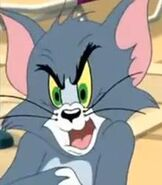 Tom in Tom and Jerry Tales