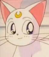 Artemis in Sailor Moon Super S the Movie